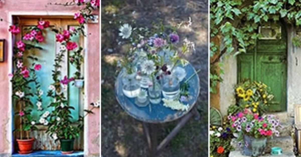un jardin en plein centre ville la jardinerie urbaine selon du vert au balcon p 39 tits plaisirs. Black Bedroom Furniture Sets. Home Design Ideas